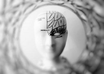 La selección latinoamericana de cerebros.