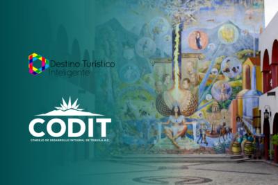 CODIT se incorpora como nuevo miembro observador internacional, dentro de la Comisión Plenaria de la Red de DTI.