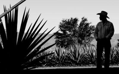 Resiliencia Social en Tequila.